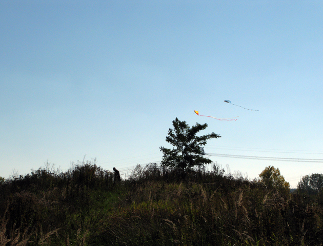 Kite fying at the plaform, 2015.