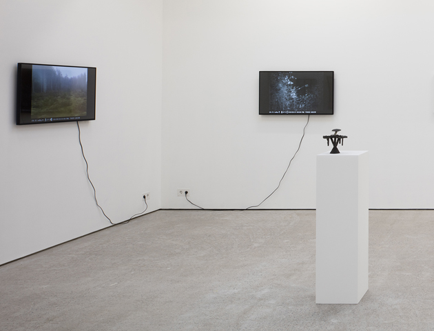 Clear-cut Preservation, video, exhibition view, 2019.